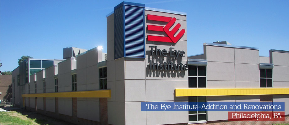 The Eye Institute
